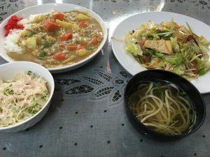 11むつみのカレーと野菜炒め